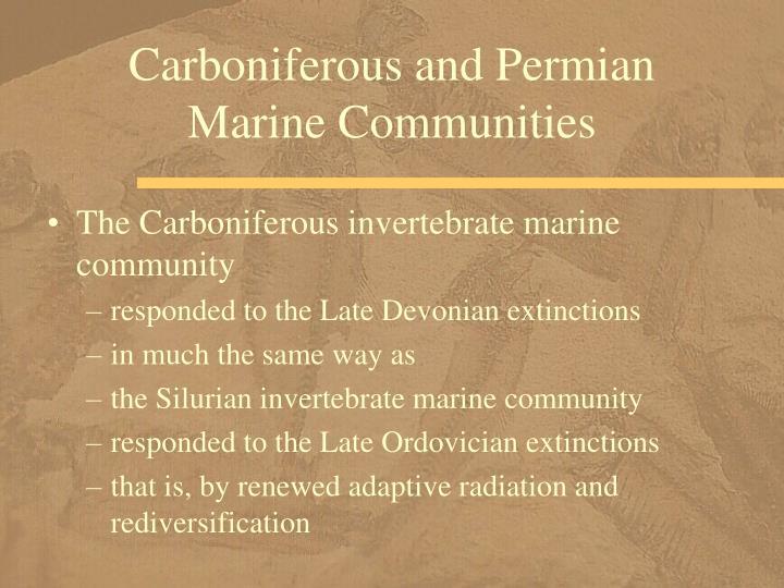 Carboniferous and Permian Marine Communities