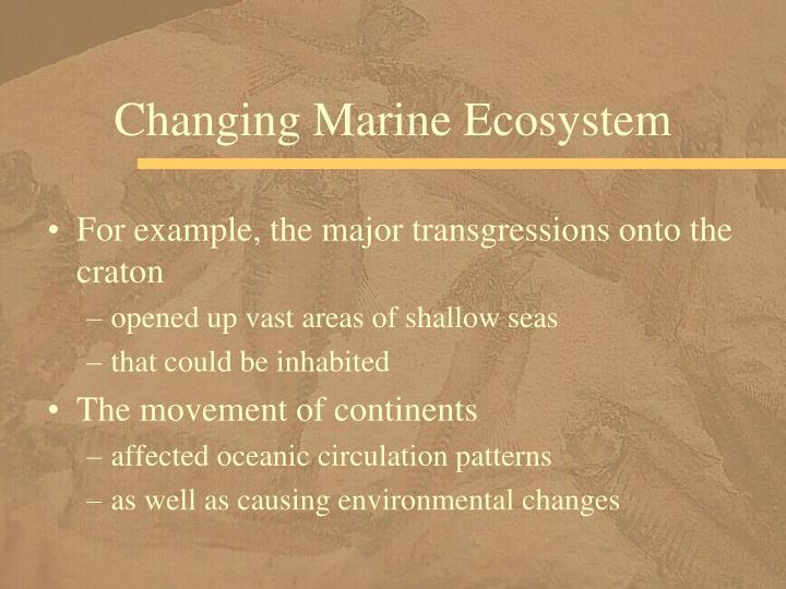 Changing Marine Ecosystem