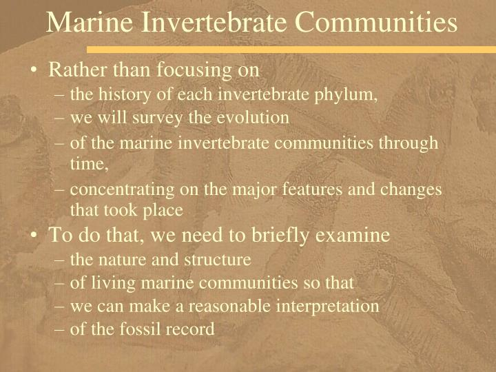 Marine Invertebrate Communities