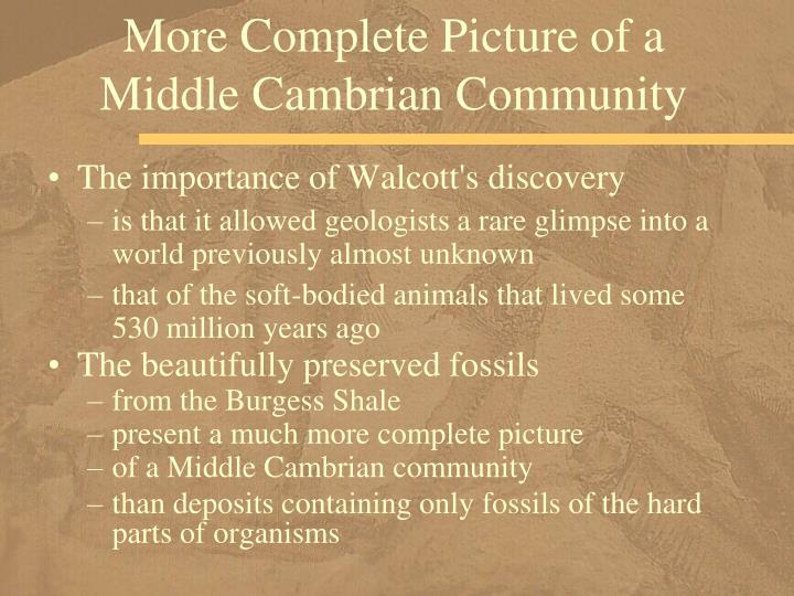 More Complete Picture of a Middle Cambrian Community