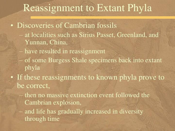 Reassignment to Extant Phyla