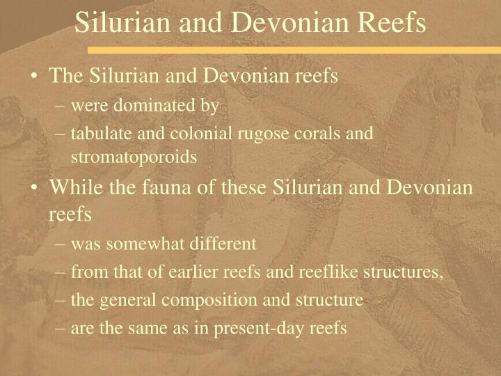 Silurian and Devonian Reefs