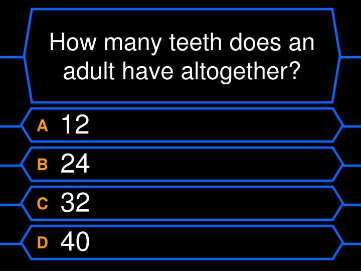 How many teeth does an adult have altogether?