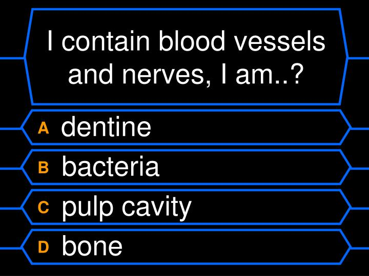 I contain blood vessels and nerves, I am..?