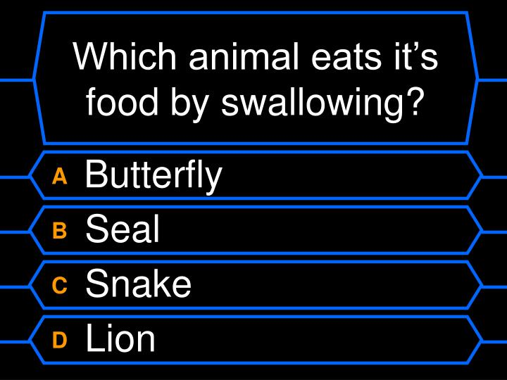 Which animal eats it's food by swallowing?