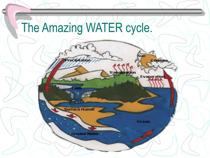 The Amazing WATER cycle.