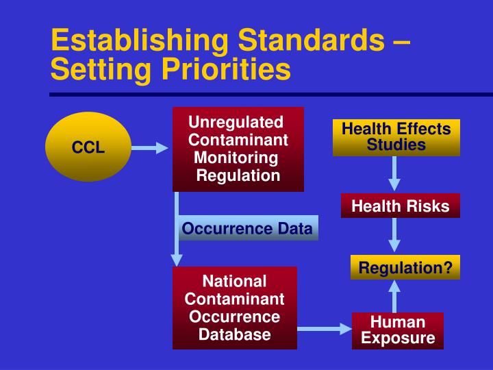 Establishing Standards –