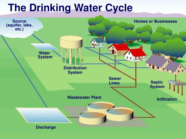 The Drinking Water Cycle