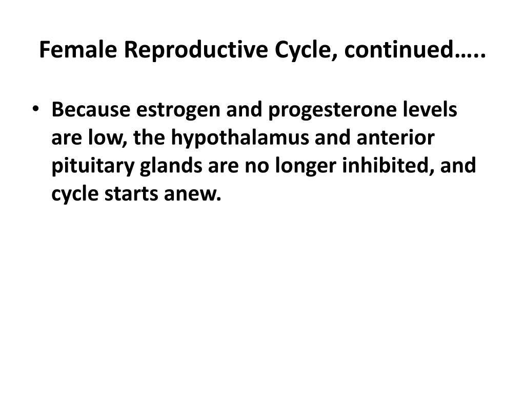 Hrt progesterone orgasm something