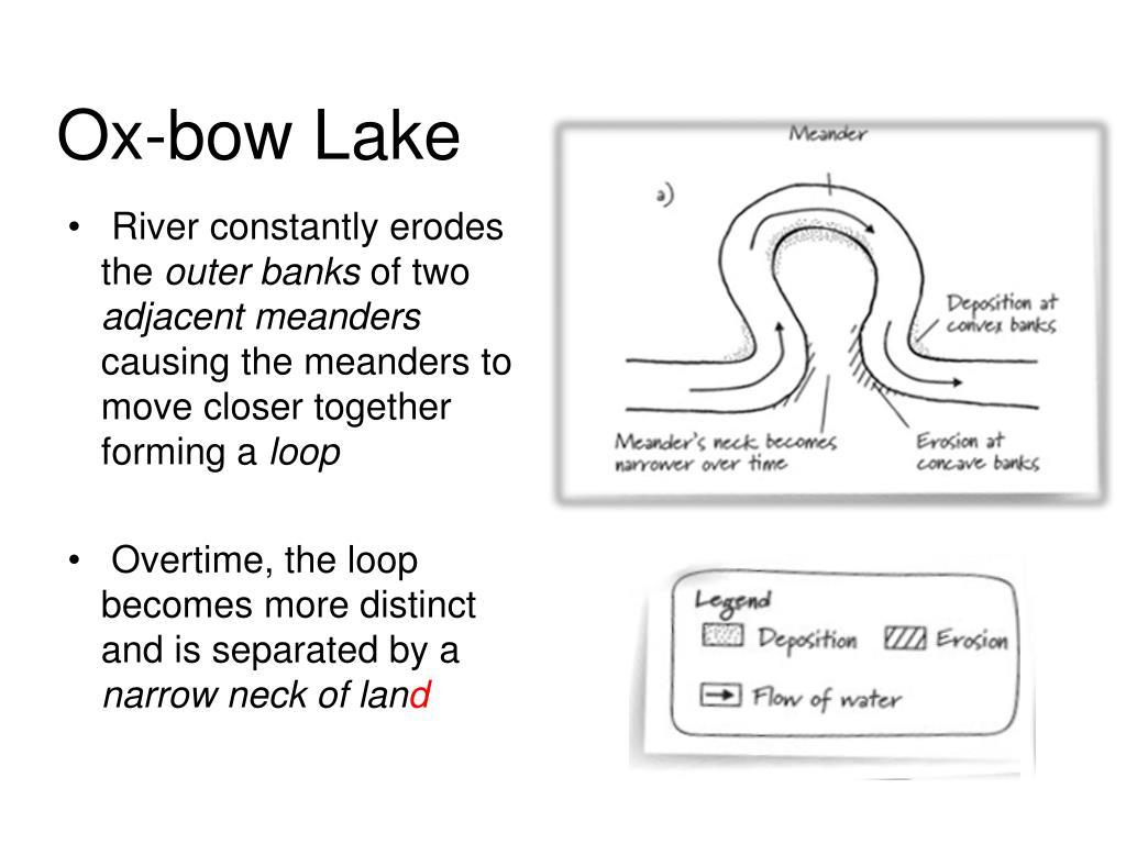 Ox-bow Lake