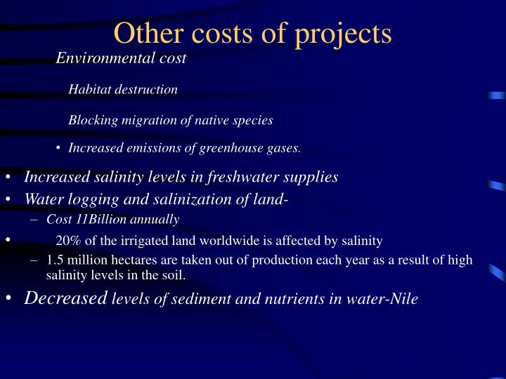 Other costs of projects
