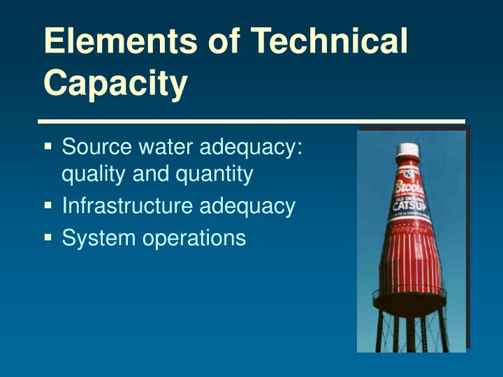 Elements of Technical Capacity