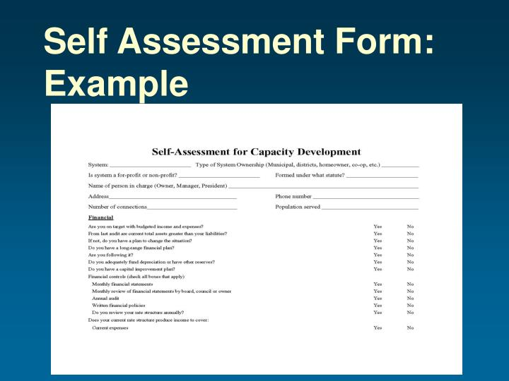 Self Assessment Form: Example