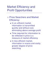 market efficiency and profit opportunities3