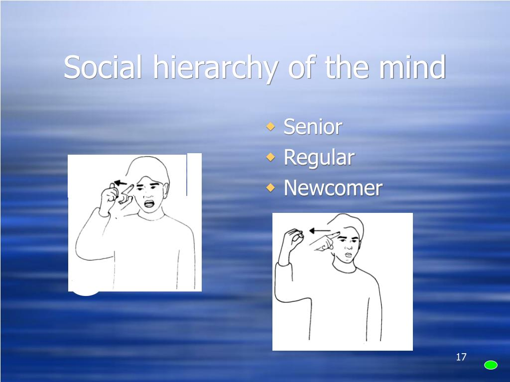 Social hierarchy of the mind