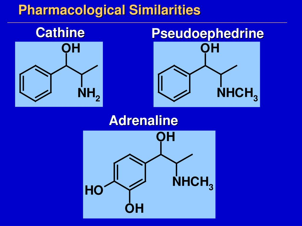 Pharmacological Similarities