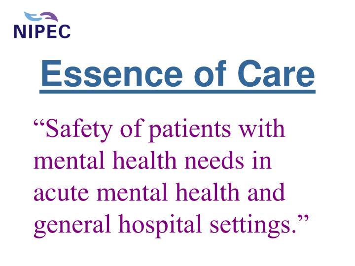 Essence of care l.jpg