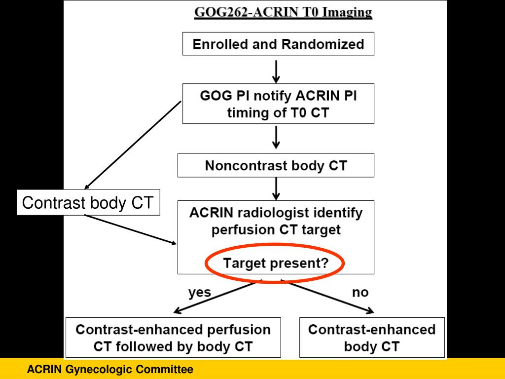 Contrast body CT