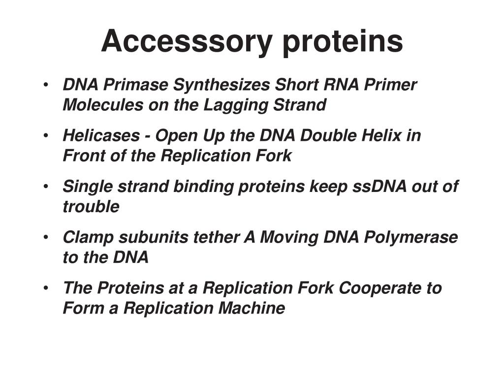 Accesssory proteins