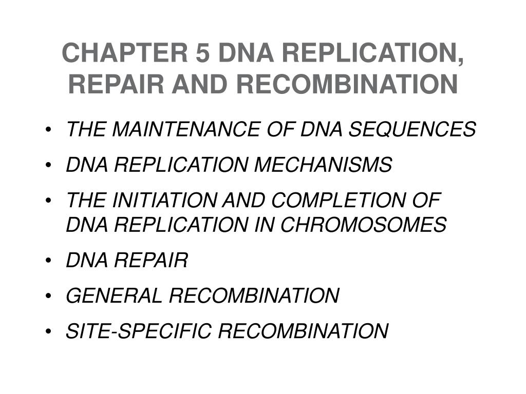 CHAPTER 5 DNA REPLICATION, REPAIR AND RECOMBINATION