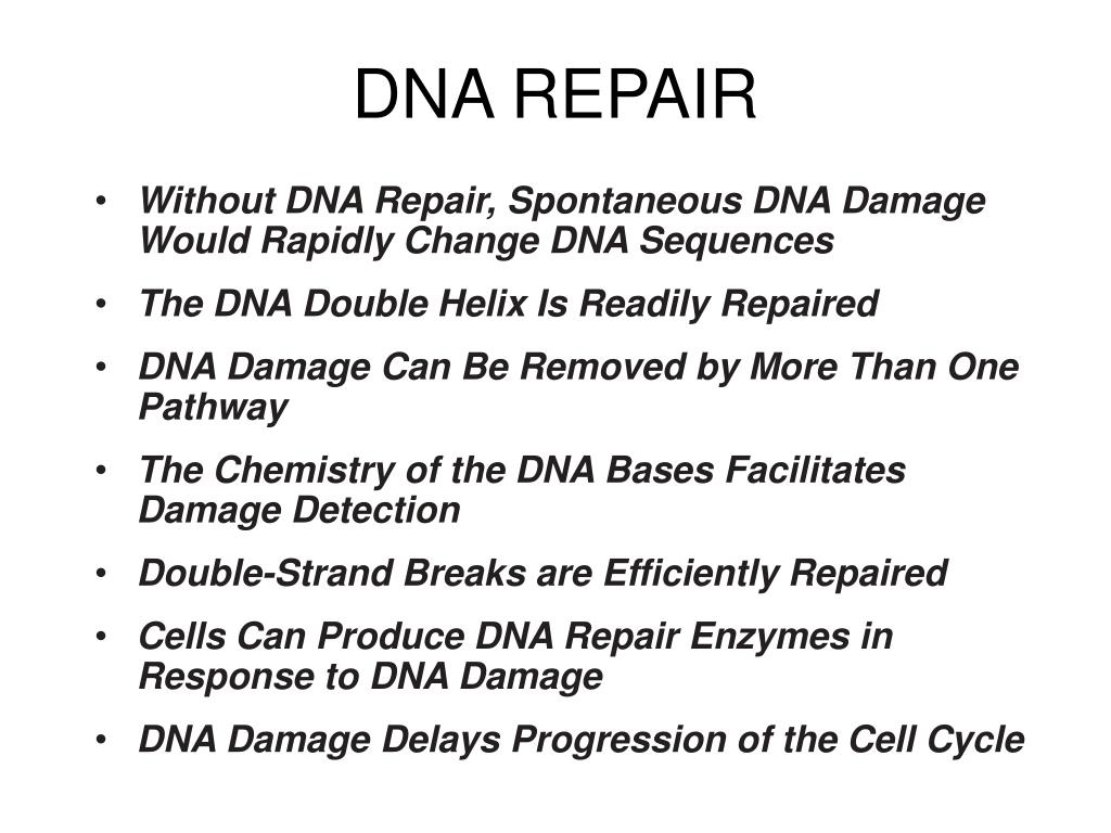 DNA REPAIR