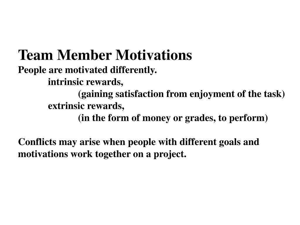 Team Member Motivations