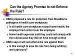 can the agency promise to not enforce the rule