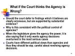 what if the court thinks the agency is wrong