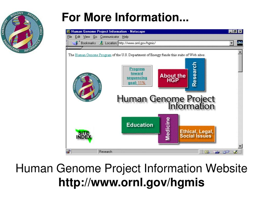the benefits of the human genome project Human genome project (hgp), an international collaboration that successfully determined, stored, and rendered publicly available the sequences of almost all the genetic content of the chromosomes of the human organism, otherwise known as the human genome.
