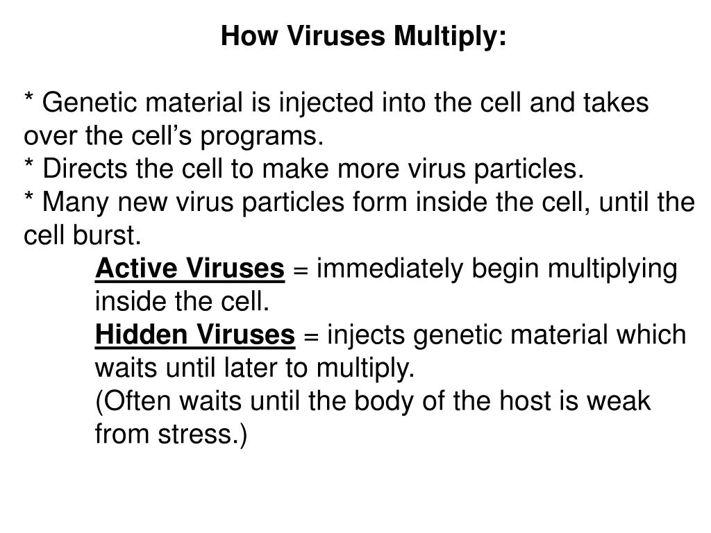 How Viruses Multiply: