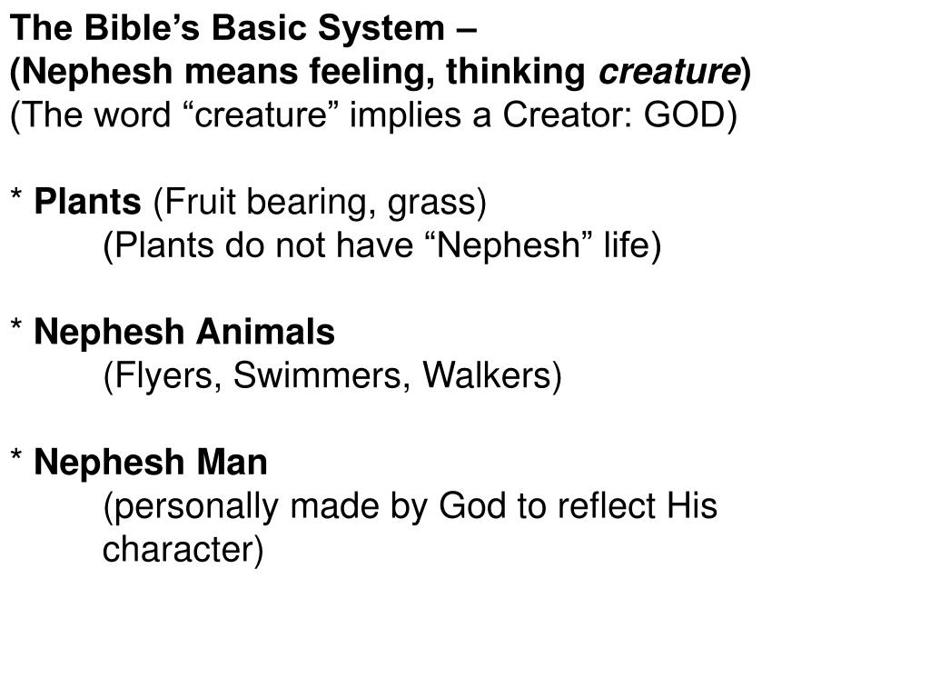 The Bible's Basic System –