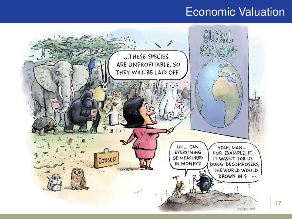 Economic Valuation