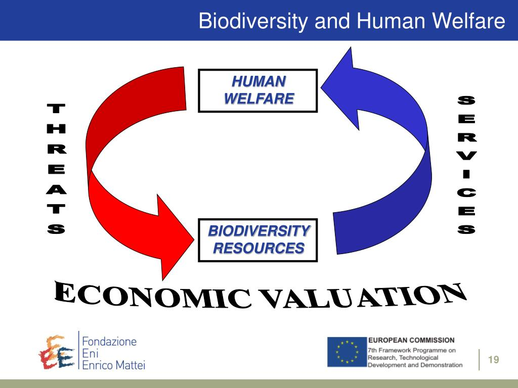 Biodiversity and Human Welfare