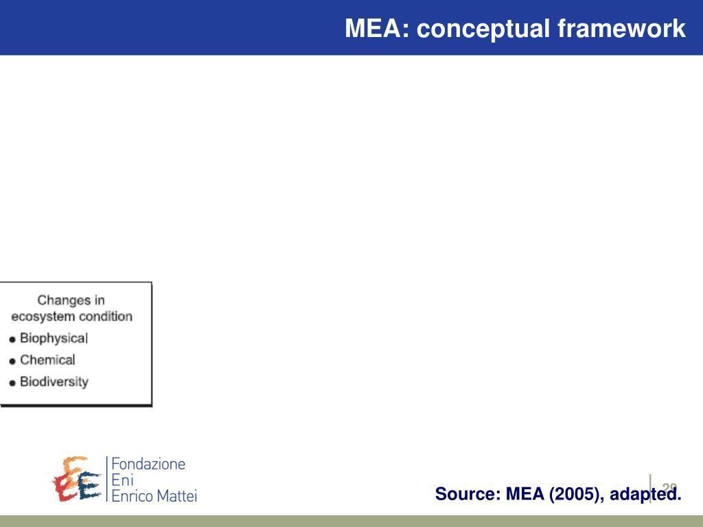 MEA: conceptual framework