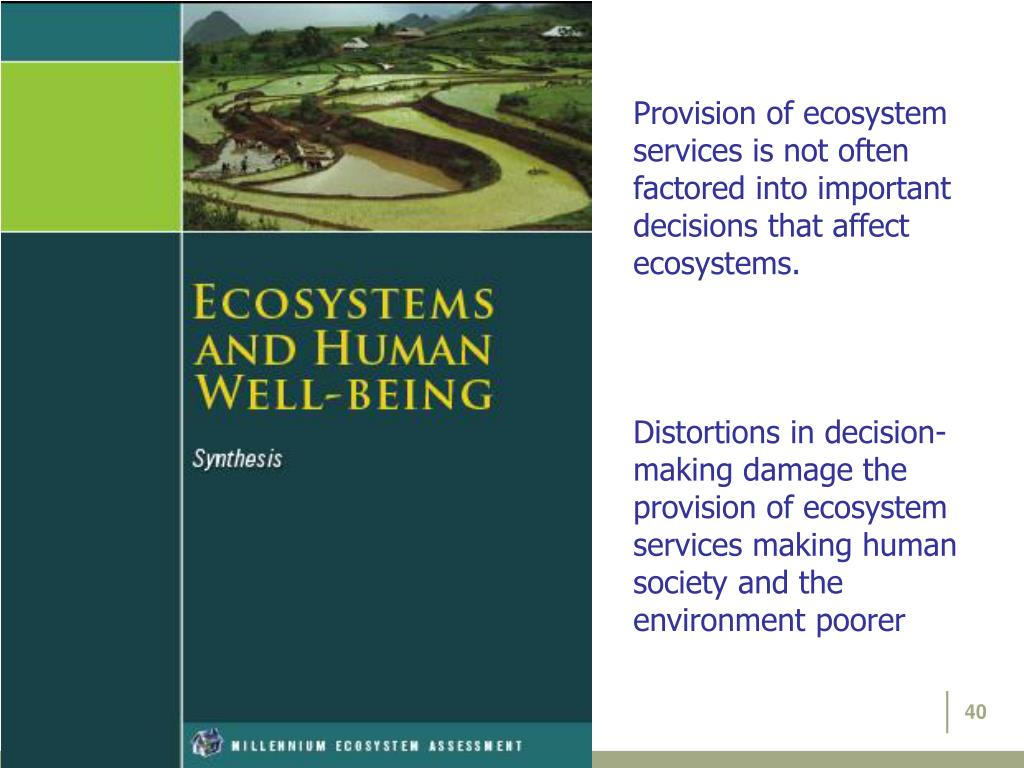 Provision of ecosystem services is not often factored into important decisions that affect ecosystems.