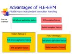 advantages of fle ehm middle ware independent exception handling