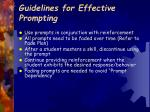 guidelines for effective prompting18