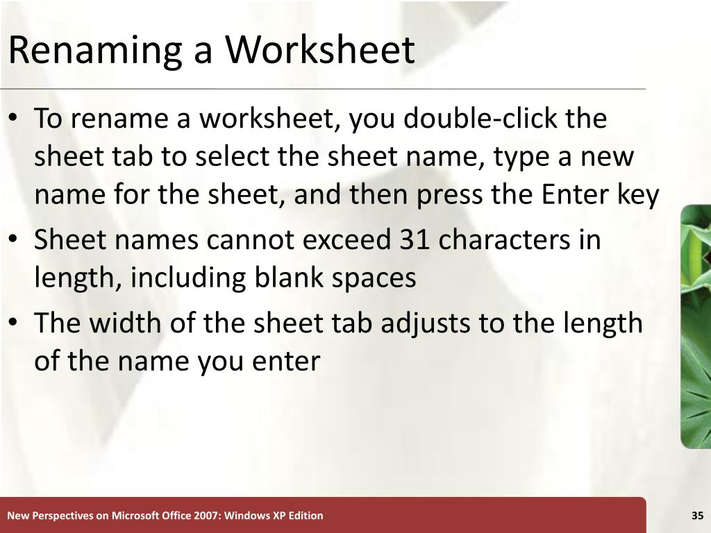 Renaming a Worksheet