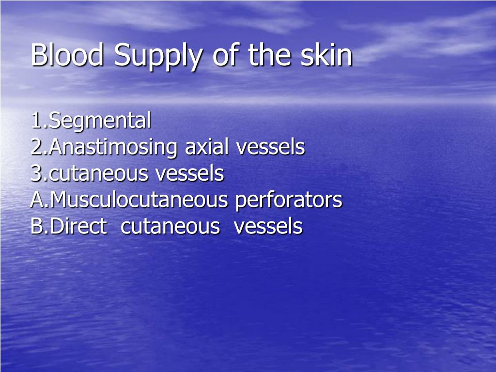 Blood Supply of the skin