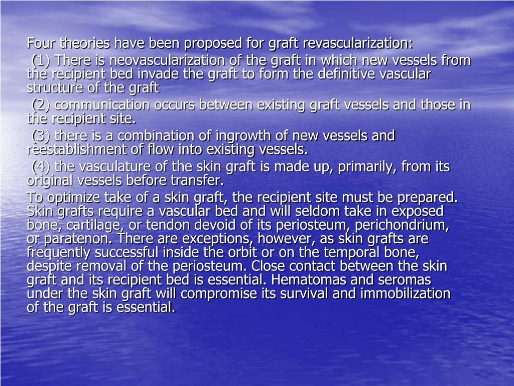 Four theories have been proposed for graft revascularization: