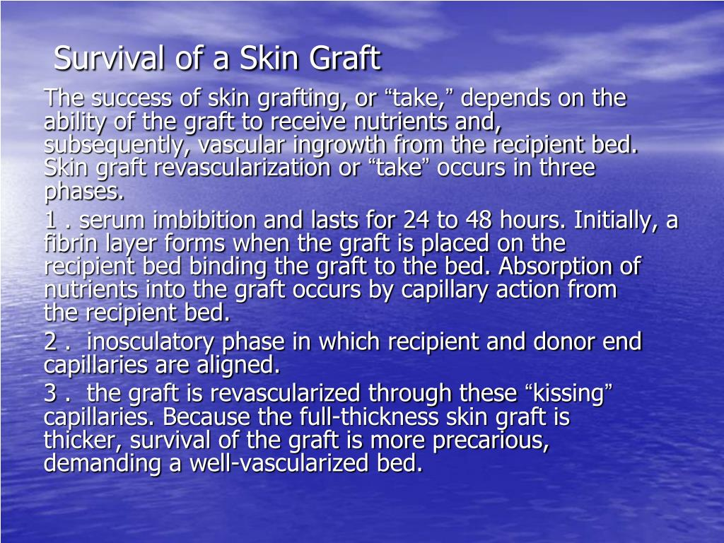 Survival of a Skin Graft