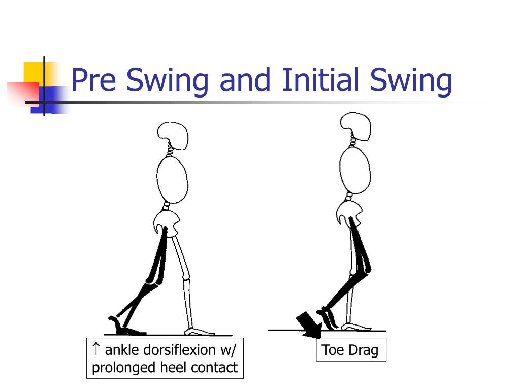 Pre Swing and Initial Swing