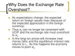 why does the exchange rate overshoot40
