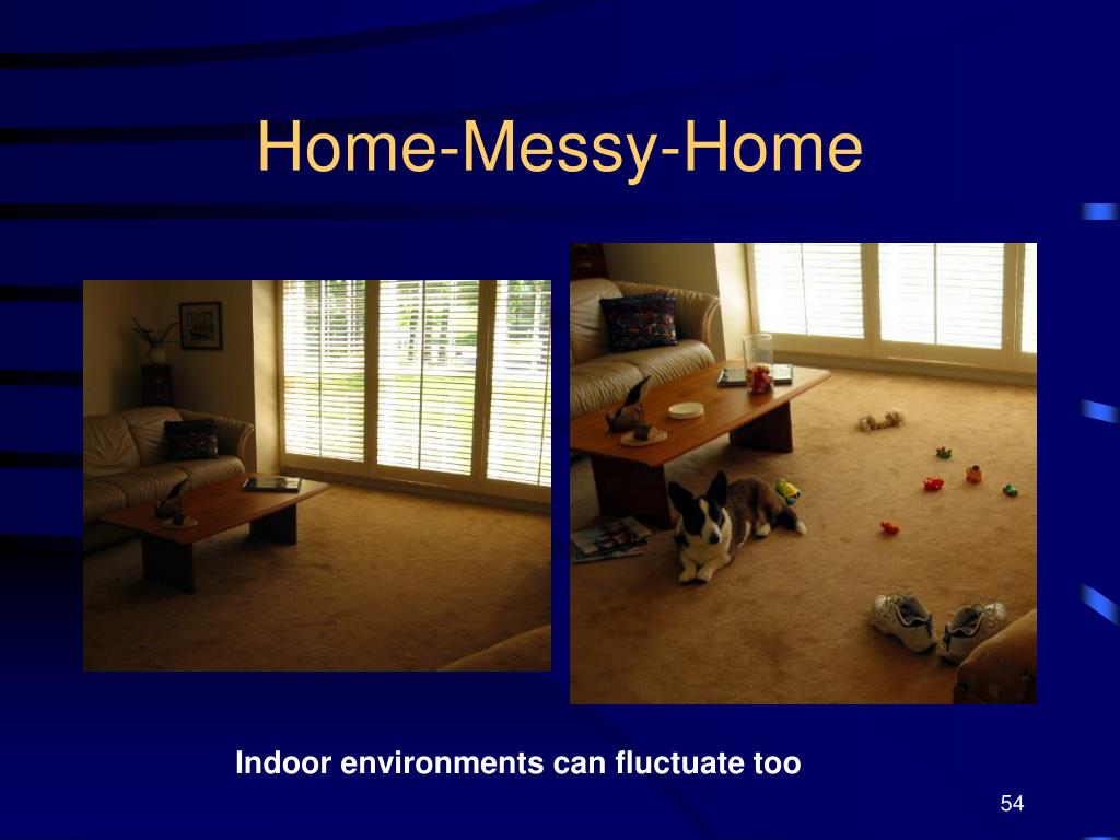 Home-Messy-Home