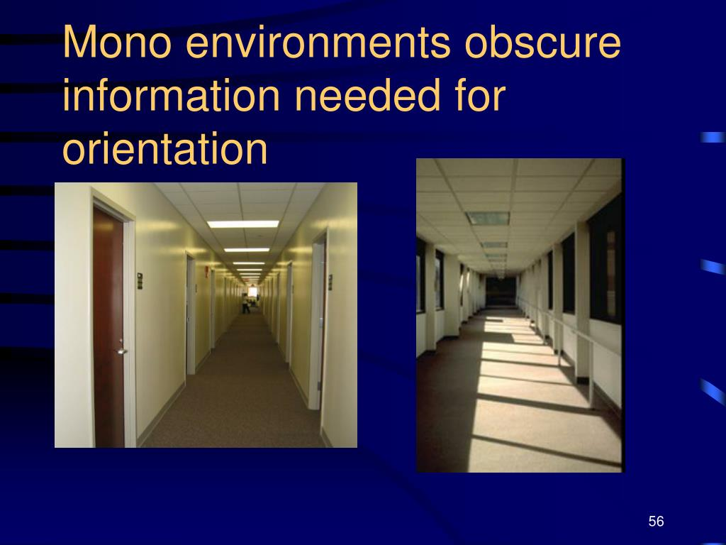 Mono environments obscure information needed for orientation