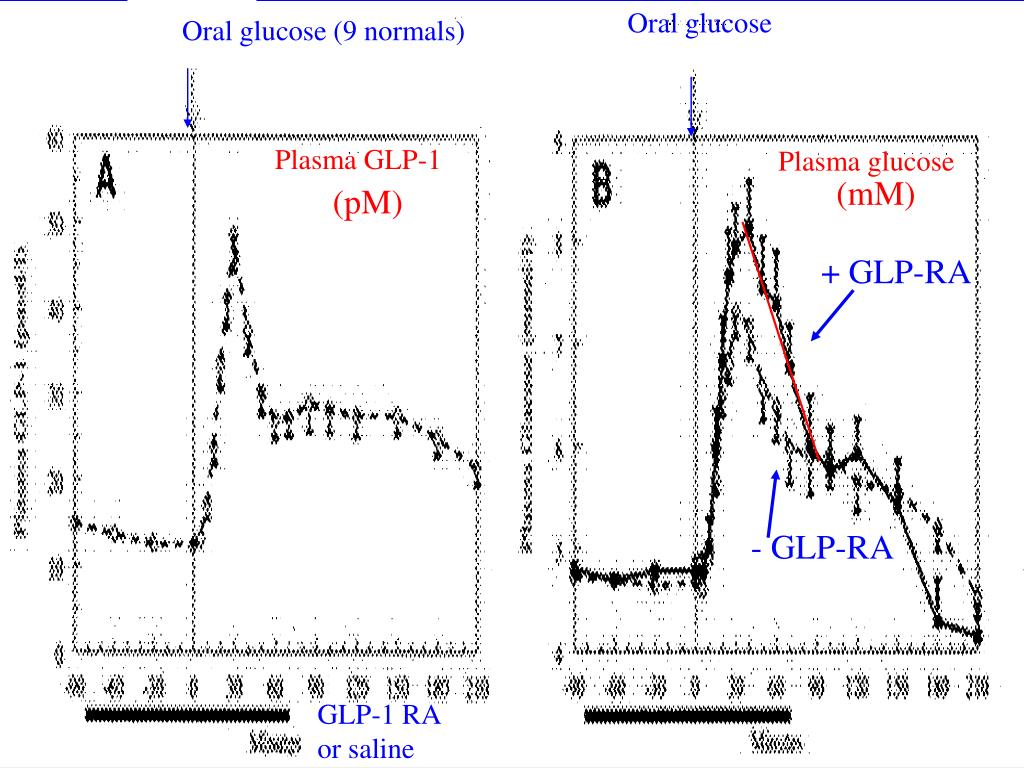 Oral glucose (9 normals)