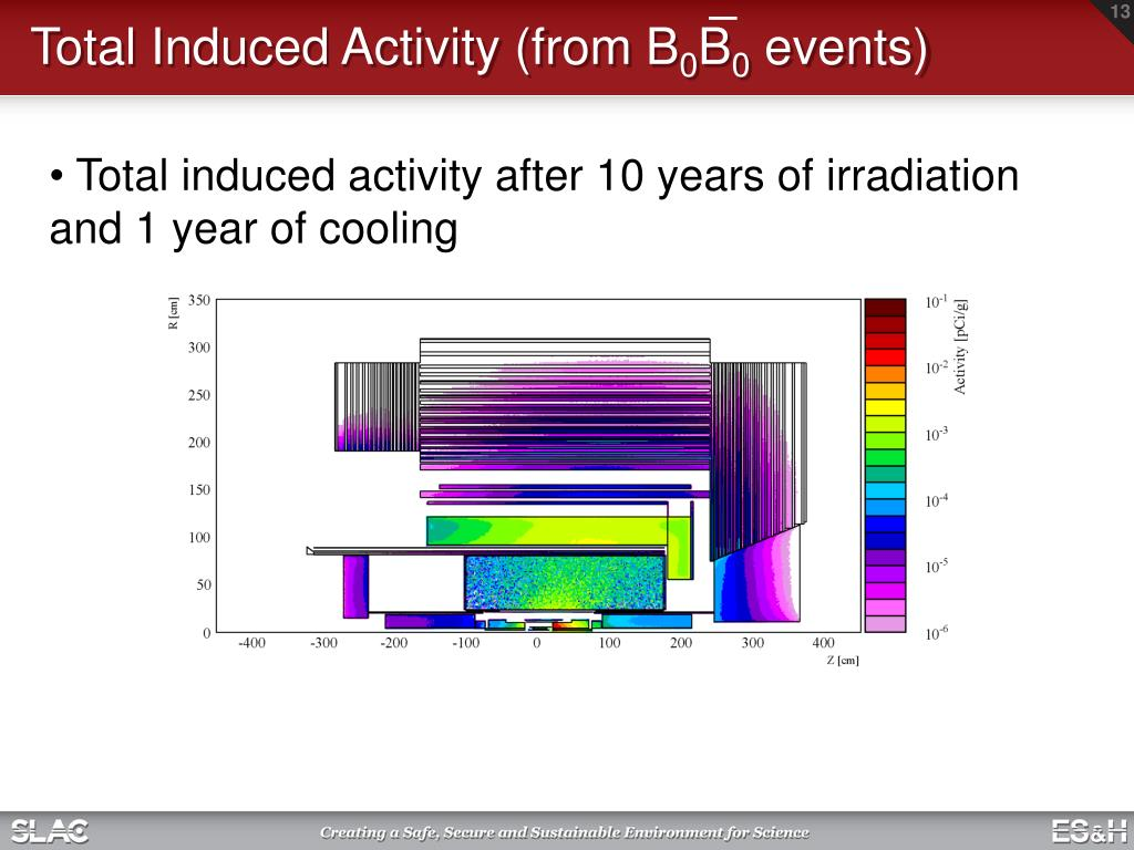 Total Induced Activity (from B