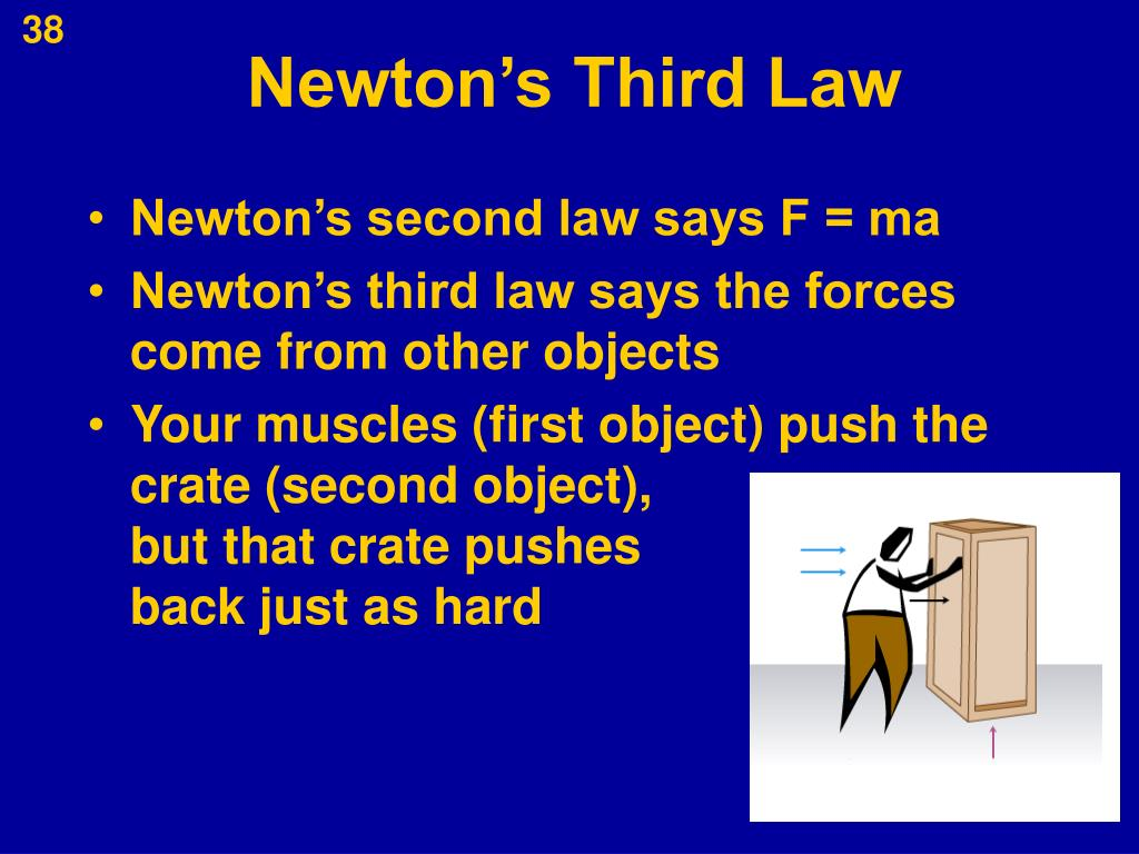 rowing newtons law In rowing as in all physical activities, the bodies job is to perform work, ie pull on the oar to propel the boat down the course all types of physical work.
