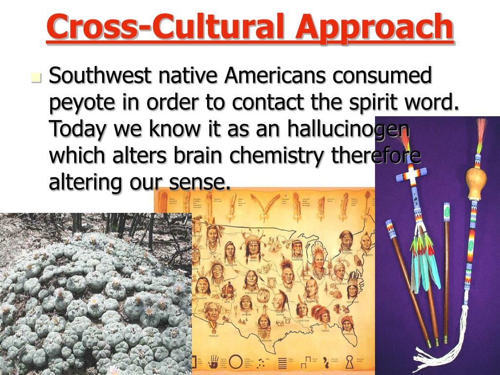 the cross cultural approach Get this from a library curriculum planning for social studies teaching : a cross-cultural approach [craig kissock.