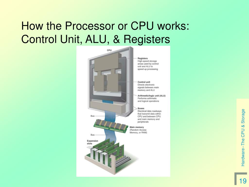 How the Processor or CPU works:  Control Unit, ALU, & Registers